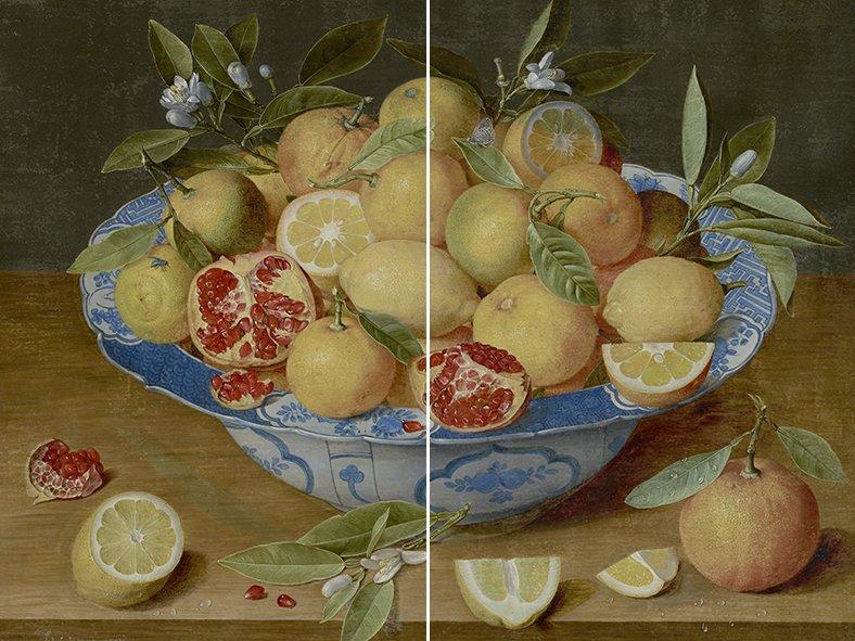 coverx2 limoni